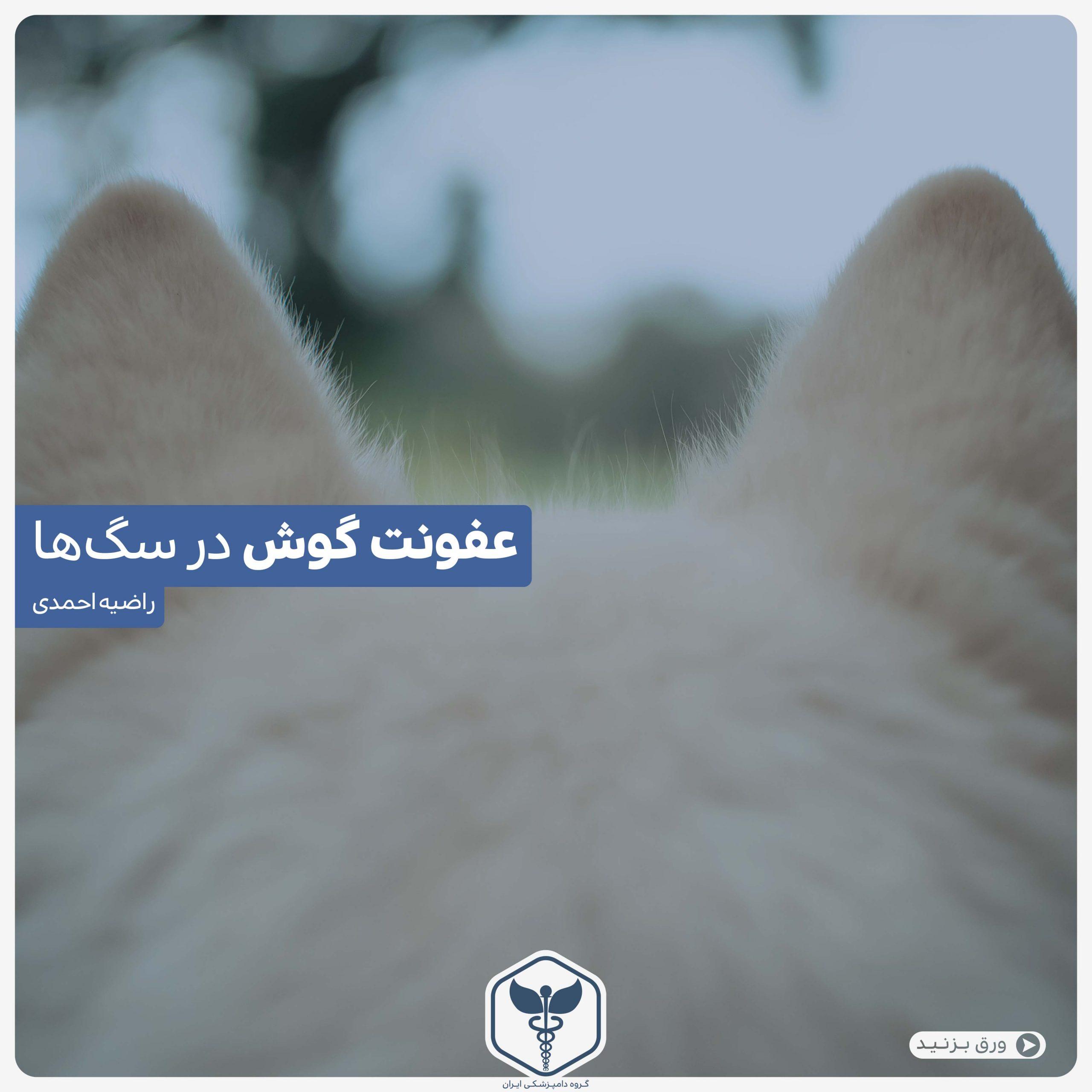 عفونت گوش سگ ها