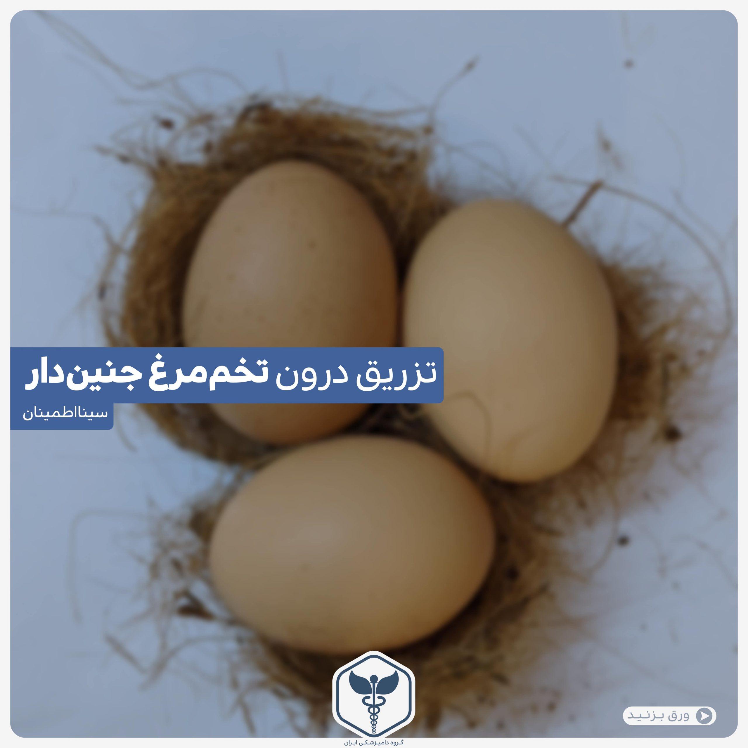 تزیرق درون تخم مرغ جنین دار