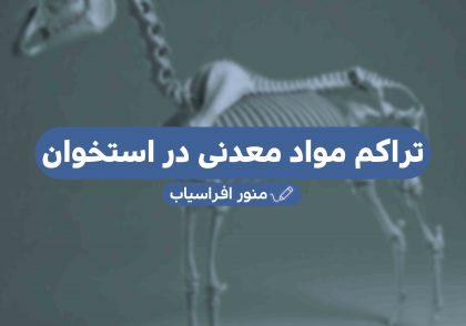 تراکم مواد معدنی در استخوان - گروه دامپزشکی ایران