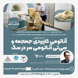آناتومی کاربردی جمجمه و سی تی آناتومی سر در سگ ها - گروه دامپزشکی ایران